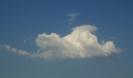 Cumulus pileus