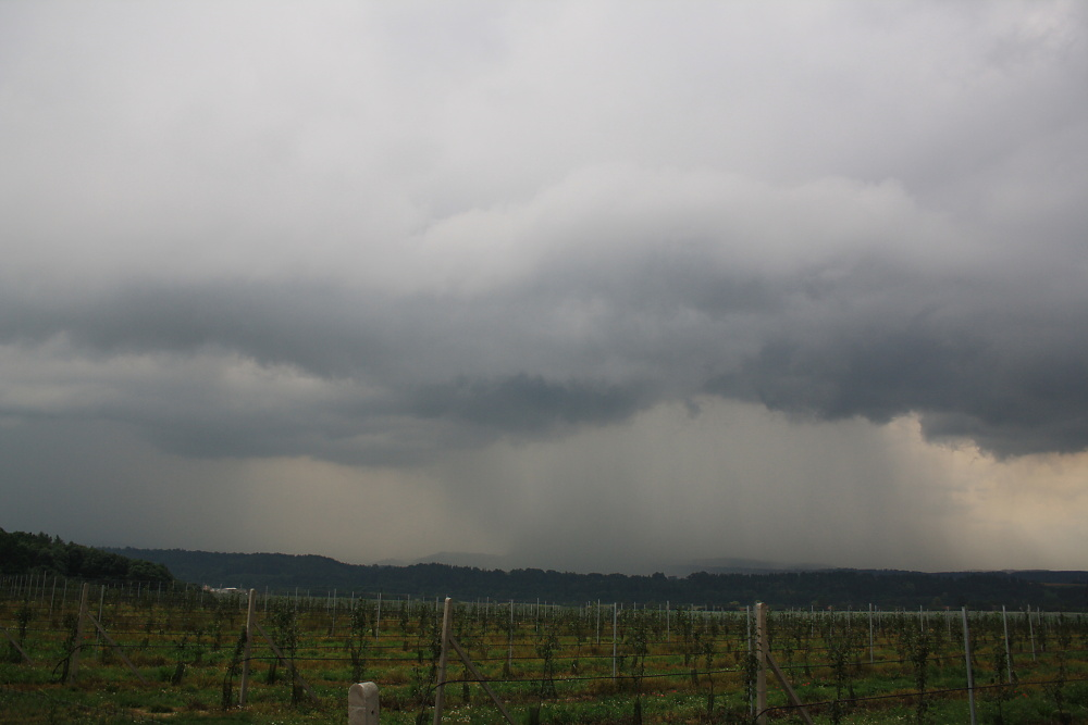 cumulonimbus-praecipitatio--shelf-cloud.jpg